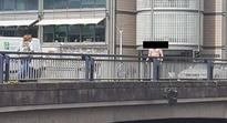 Did you seek this 'cheeky' pedestrian in Cork City's marina today?