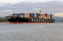 Hanjin boss crashes out of Winter Olympics