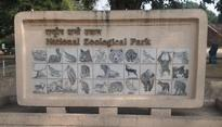 Delhi zoo comes back to normalcy, records exotic deer births