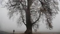 Rains, snowfall in Kashmir bring relief from cold