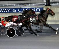 Arque Hanover returns a winner