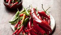 A user's guide to chillies