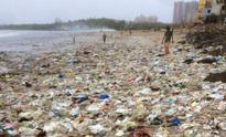 Ganesh Chaturthi: For visarjan, remember environmental crisis more critical than religious sentiment