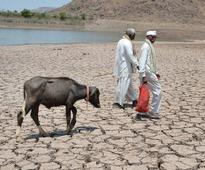 Maharashtra collects Rs 1,300 cr as drought cess in Oct-Mar