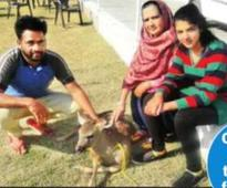 Dadi's values impel teen to save fawn from dogs