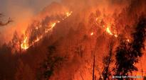 After Uttarakhand and HP, forest fire now rages in Kashmir