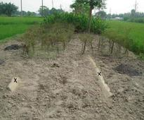 Encroachers fill up 2 canals for crop farming