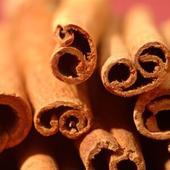 Can Cinnamon Make You Smarter?