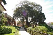 30 of the best private schools in Australia
