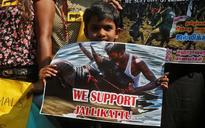 Jallikattu row: Supreme Court seeks reply from Tamil Nadu in 4 weeks on PETA plea against law