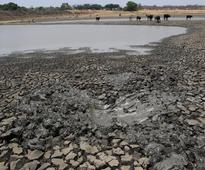 Cattle shortage leaves Zimbabwe's fields unploughed as rains fall