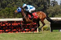 Tanui guides Western Ballad to Kenya Derby win at Ngong