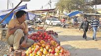 Cash crunch: Shortfall in fruits and veggies in Ghaziabad this winter