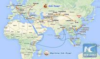 Interview: China-Pakistan Economic Corridor on track: ambassador