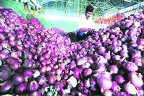 Lasalgaon onion crisis: Auctions at standstill