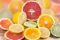 Tous les agrumes de nos vergers : Oranges, citrons, bergamotes et bigaradiers…