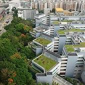 HK government investigates university green roof collapse
