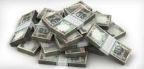 IFC Raises Rs 180 Crore Via Rupee-Denominated 'Maharaja Bonds'