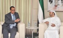 UAE reiterated to international efforts in Yemen