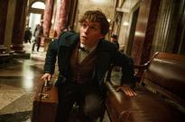 'Fantastic Beasts:' Everything we know so far