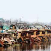 Green cause: Houseboats get  a new address in Dal Lake