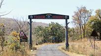 Railway project endangers Melghat Tiger Reserve