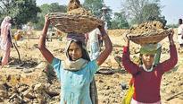 Unpaid salary bill of over Rs 8,000 crore set to hit MGNREGA