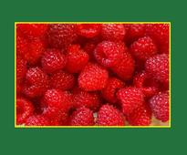 Summer recipes: Raspberry and Spinach Salad
