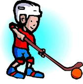 Minor ball hockey report