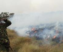 Ruma National Park on fire, dry weather slows efforts to put it off
