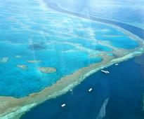 Great Barrier Reef not part of Unesco's endangered world heritage list