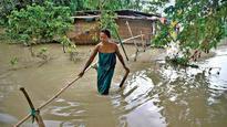 How social media posts may help predict natural disasters