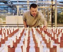 Dutch crops grown on 'Mars' soil found safe to eat (AFP)