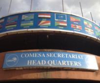 COMESA starts observer mission
