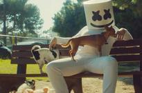 Billboard Dance Chart Upstarts: Marshmello, Shaun Frank & Cheat Codes