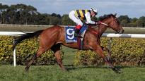 Racing: Weir loves the bush beat and Warrnambool's the place for him to shine