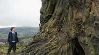 Movie reciew 'A Monster Calls': A visually stunning pallid fantasy