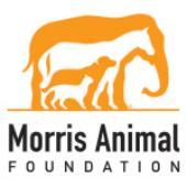 Morris Animal Foundation Announces 2016 Wildlife Research Grants
