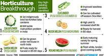 IARI releases seven new varieties of crops