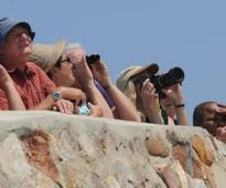 Hermanus Whale Festival: Drivers urged to take care