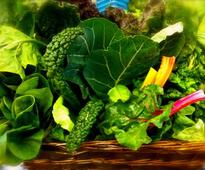 Why You Should Eat Leafy Greens Regularly