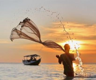 Lankan navy arrests eight TN fishermen