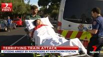 Man charged with attacking elderly woman on train has schizophrenia, court hears