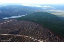 After 20 years the Forest Stewardship Council to properly protect Intact Forest Landscapes