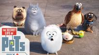 'The Secret Life Of Pets' Review: That one secret that needed to be unmasked!
