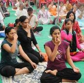 HRD ministry asks universities to start yogic art and science department