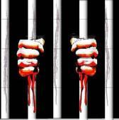 Inmate's daughter dies in Ballia prison