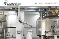 Ahead of IPO, Laurus Labs sells shares for Rs395 crores to 25 anchor investors