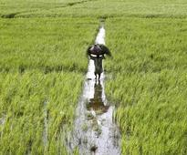 SCA for formation of committee for agri sector's issues