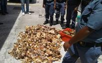 Man due in court for alleged illegal possession of crayfish